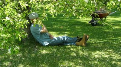 Садовник отдыхает под яблоней